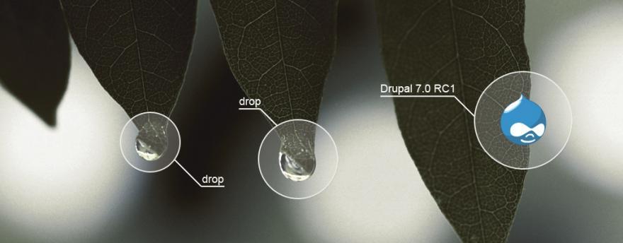 Drupal 7.0 RC 1