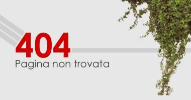 Sito web in Drupal: le pagine 404